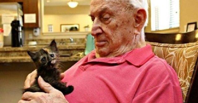 Dom seniora, który opiekuje się zarówno starszymi ludźmi, jak i porzuconymi zwierzętami