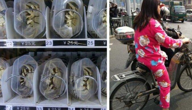 12 absurdalnych, ale bardzo interesujących faktów o życiu w Chinach