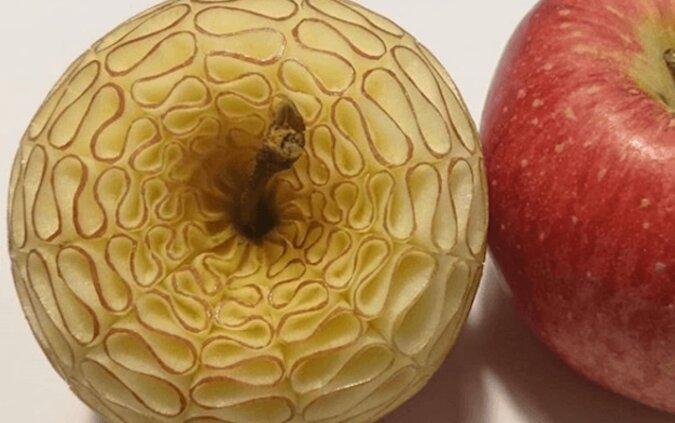 Oszałamiające wzory na owocach i warzywach techniką mukimono japońskiego mistrza Gaku