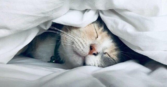 Najczęstsze błędy związane ze snem, które powodują, że budzisz się zmęczony