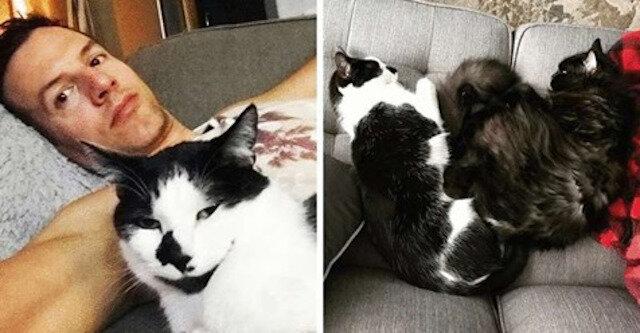 Kanadyjczyk sprawdził, czy koty tęsknią za nim, kiedy nie ma go w domu. Nagrał film