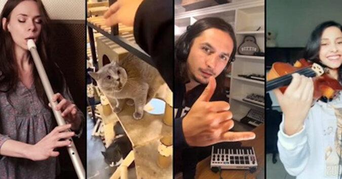 Muzycy z całego świata zamienili miauczenie kota w hit sezonu