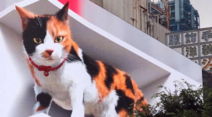 Gigantyczny, hiperrealistyczny kotek zamieszkał na jednej z ulic w Tokio