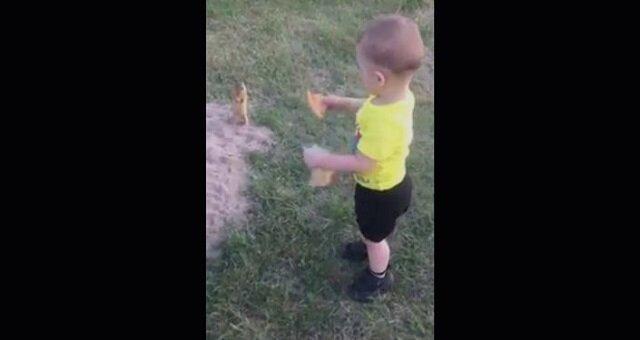 """""""Bierz to albo zmienię zdanie!"""" Dzieciak i wiewiórka bawią sieć historią z pizzą"""