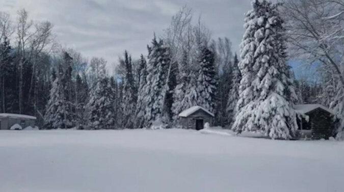 Właściciel chciał uchwycić śnieżny krajobraz, ale pies tylko uczynił obraz jeszcze lepszym. Wideo