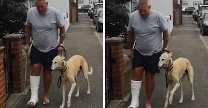 Właściciel wydał 400$ i dowiedział się, że pies kuleje nie z powodu choroby