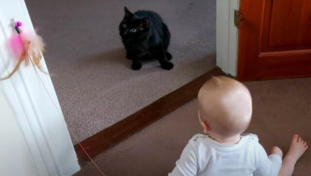 Jakie to wzruszające: kot uwielbia 9-miesięczne dziecko
