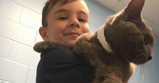 Mały chłopiec wybrał najsmutniejszego kota w schronisku