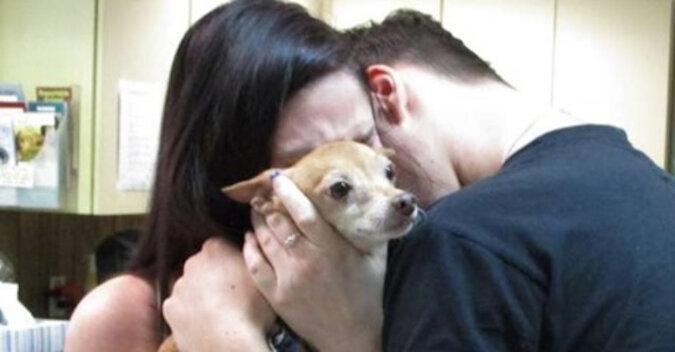 Rodzina płakała, trzymając chudego psa, który zaginął sześć lat temu. Pies pamiętał swoją rodzinę