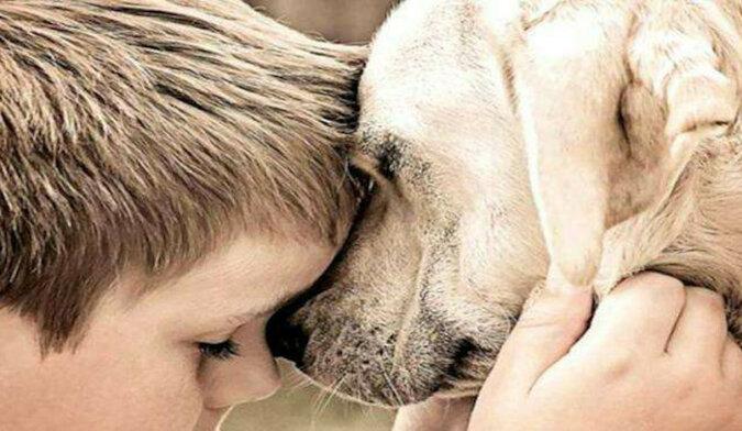 """Wieczna przyjaźń: """"Mimo tego, że psy bardzo mało żyją, ale bramy raju są dla nich zawsze otwarte"""""""