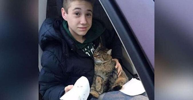 Z furgonetki pędzącej przez most wyrzucono kota, nastolatek natychmiast rzucił się na pomoc zwierzęciu