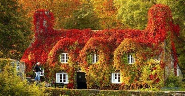 11 malowniczych miejsc na naszej planecie, uchwyconych jesienią