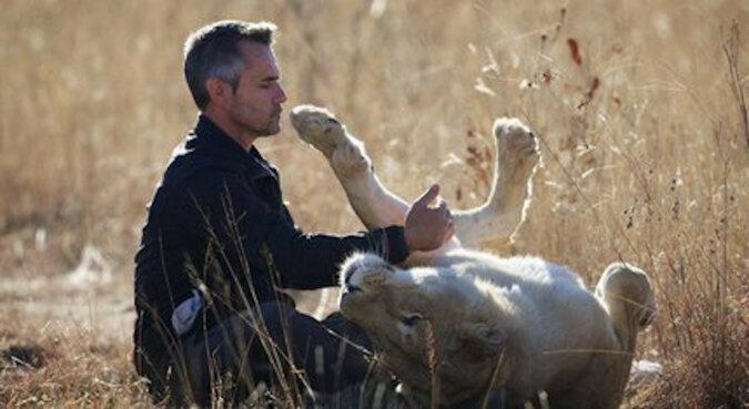 Lwica spotkała mężczyznę, który ją uratował. Rzuciła się na niego aby przytulić