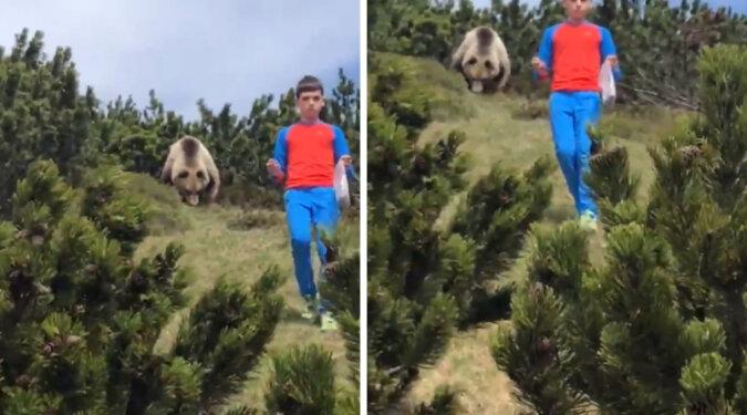 12-letni chłopiec spotkał niedźwiedzia w lesie i właśnie ta prawidłowa reakcja uratowała mu życie