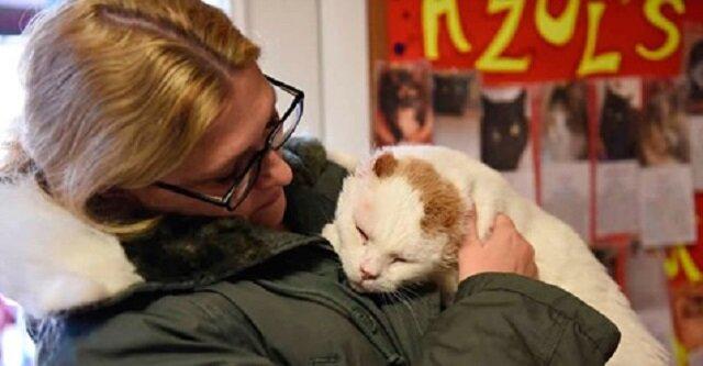 """""""Nikogo nie zabierzemy ze sobą"""" - powiedziała do swoich córek, wchodząc do schroniska i zobaczyła najbardziej niechcianego kota"""
