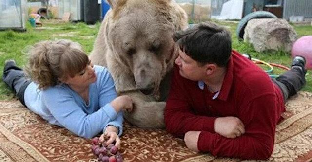 Jaki jest los rodziny, która od 28 lat mieszka z niedźwiedziem w tym samym domu?
