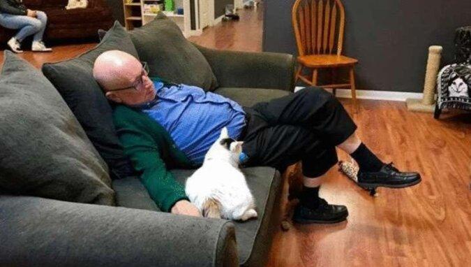 75-latek po prostu spał z kotami ze schroniska i przypadkowo zebrał dla nich 40 tysięcy dolarów