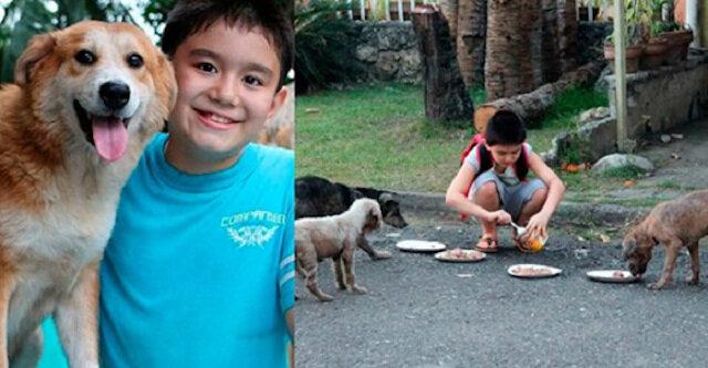 Zwykły uczeń wydawał całe swoje kieszonkowe na karmienie bezdomnych zwierząt