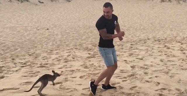Młody człowiek znalazł przyjaciela w postaci małego kangura