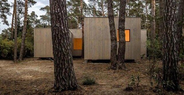 W Niemczech zbudowano dom w taki sposób, aby nie ścinać ani jednej sosny