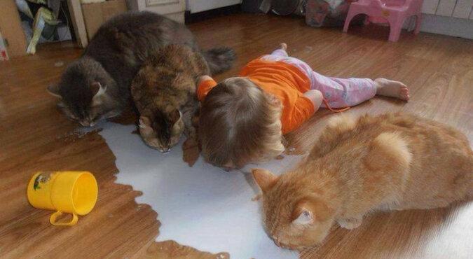 Jeśli masz zarówno dzieci, jak i zwierzęta, prawdopodobnie nie masz czasu by się nudzić