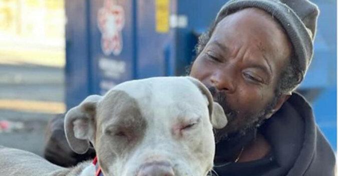 Bezdomny rzucił się do płonącego schroniska, aby uratować zwierzęta