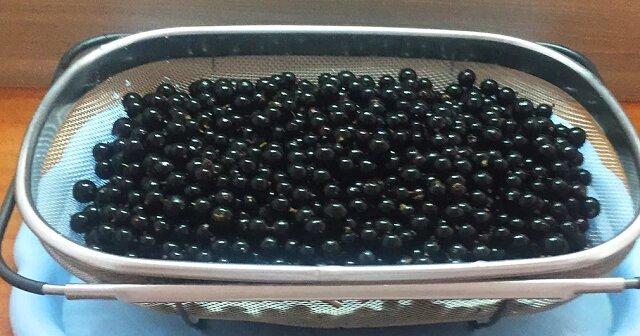 Czarną Porzeczkę jemy całą jesień, zimę i wiosnę - a jagody są jak świeże. Nie gotuję, nie zamrażam