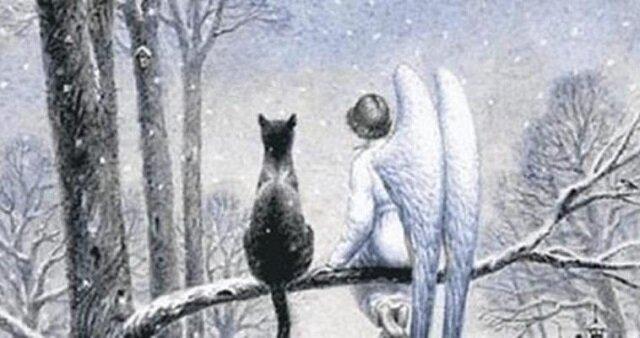 Wzruszająca opowieść o kocie i aniołku