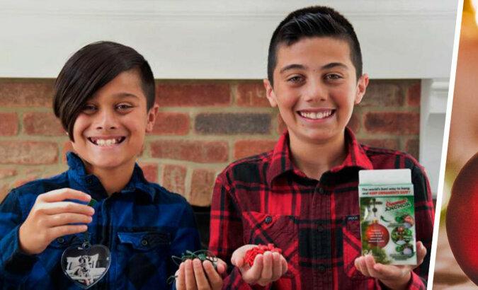 Bracia udekorowali choinkę, ale rozbili ulubioną zabawkę babci. Nie skarcono ich - odłamki wzbogaciły rodzinę o miliony