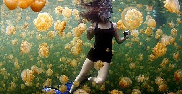 Niesamowite zdjęcia National Geographic, które podbiły Internet